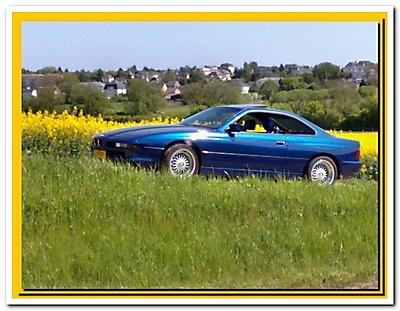 BMW 850 CI (M73)_4