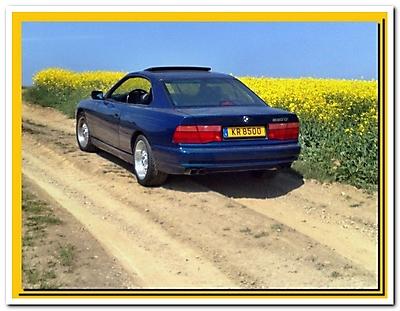 BMW 850 CI (M73)_5