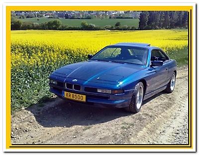 BMW 850 CI (M73)_6