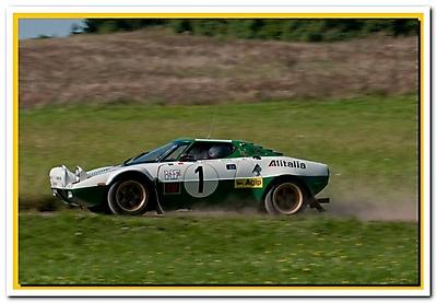 WRC 2010_3