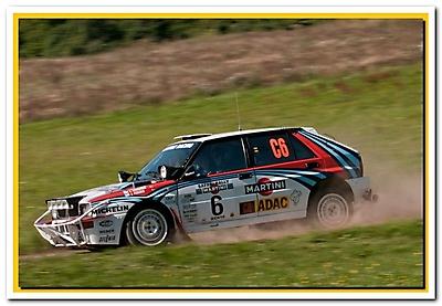 WRC 2010_5